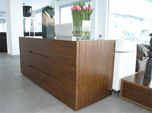 Cabinet Furniture Coating Product
